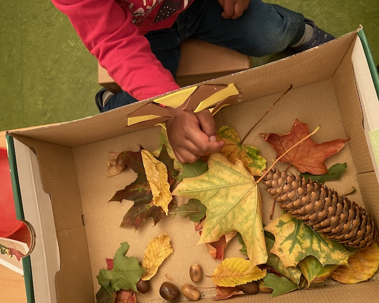 Fühlkiste, grüne Krabben, Herbst, Kind fühlt