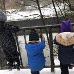 Schneespaziergang, rutschig, Eichtalpark